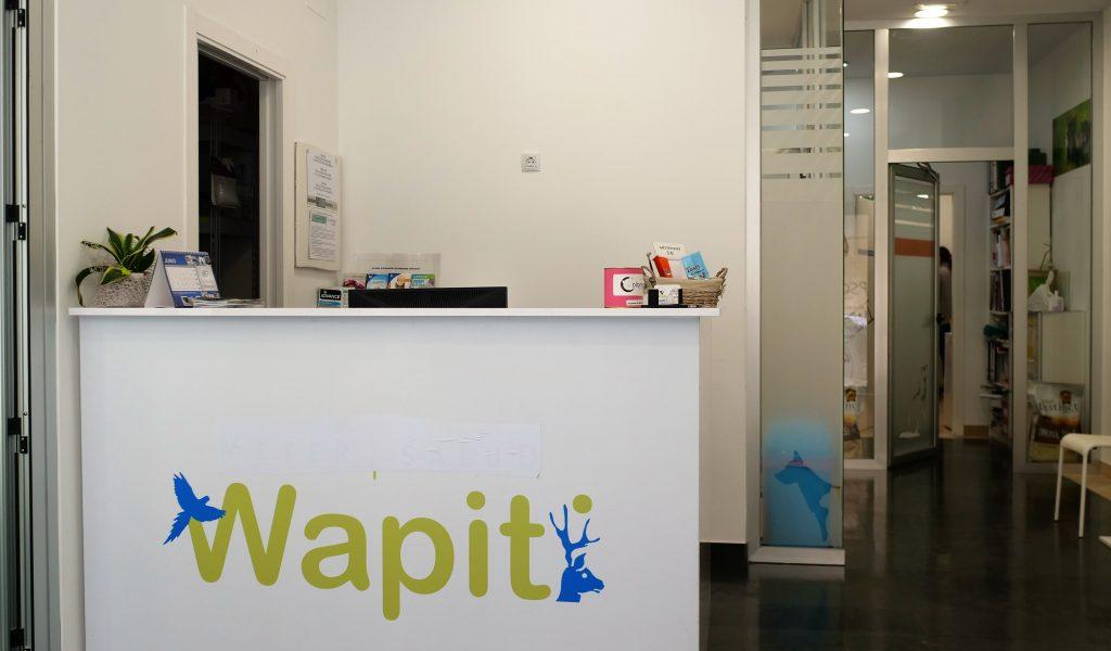 veterinario_wapiti_cangas_instalaciones_recepcion