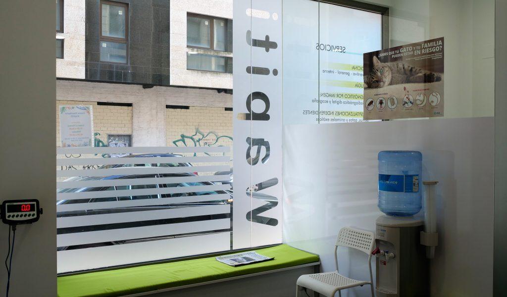 veterinario_wapiti_cangas_instalaciones_sala_de_espera